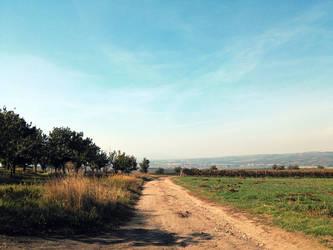 Dusty road by Favenatig
