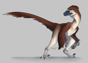 EOA - COM: Feathered Friend