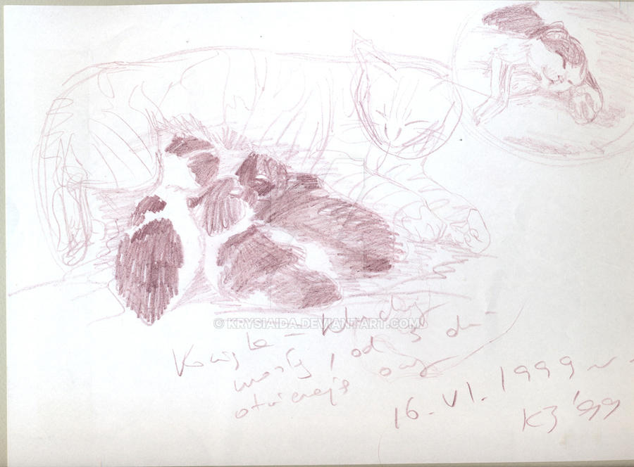 sketches of the kittens 2 1999 by krysiaida