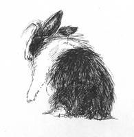 rabbit by krysiaida