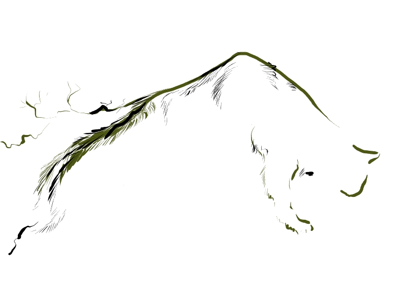 halfcat halfmountain by krysiaida
