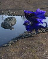 Little Dragon Meets an Alligator by chronos491
