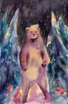 Night Watch Bear