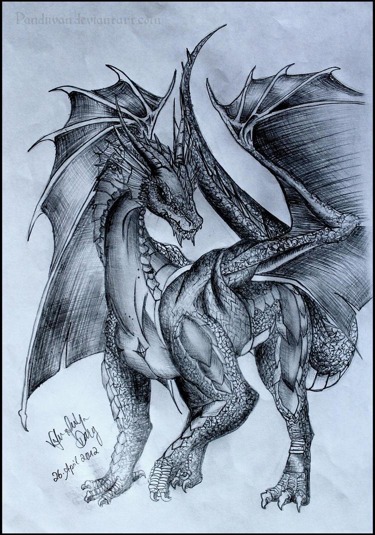 female dragon by pandiivan on deviantart