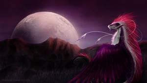 Moonlight. by PandiiVan