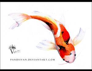 Watercolor Koi Fish.