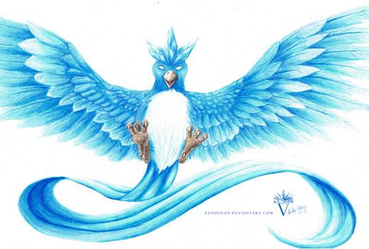 Commission: Semi-Realistic Arktos aka. Articuno