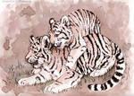Wine Tigers