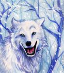 The Joy of Snow