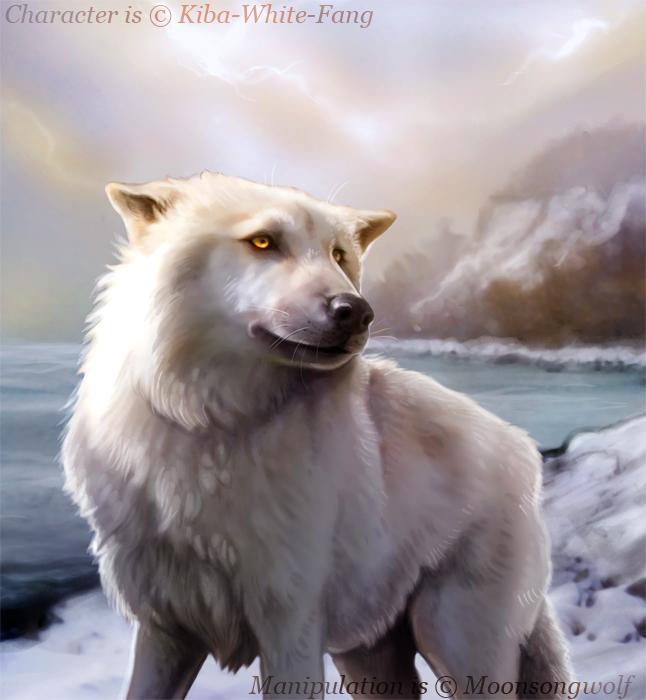 Balto Plot Characters  Winter__s_soul_by_moonsongwolf-d4k7orj