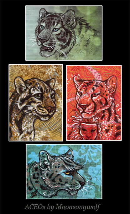 ACEO Cards: The Family Felidae by MoonsongWolf