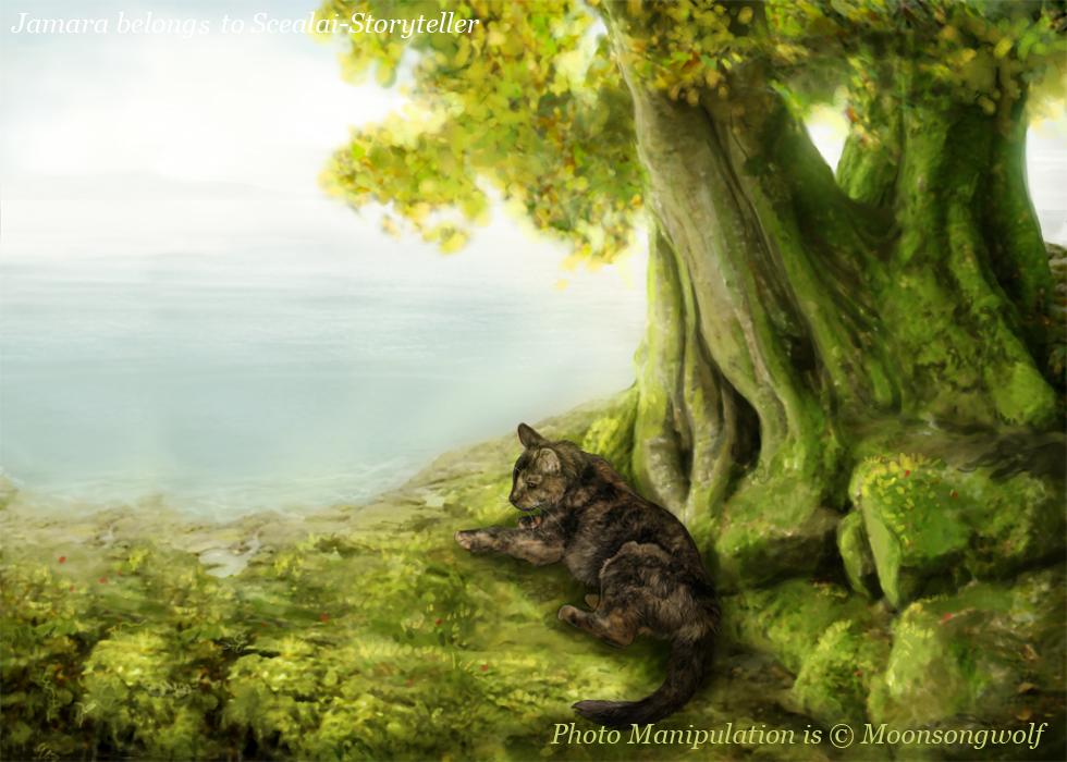 Here, it is eternal spring by MoonsongWolf