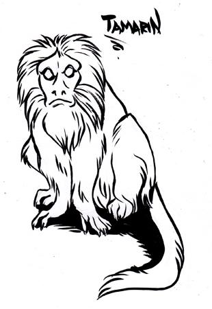 Vesperian Bestiary: Tamarin by MoonsongWolf