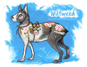 Wiltweed - Character Reference
