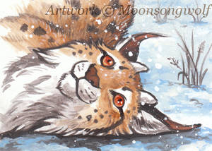 ACEO: Welcome winter