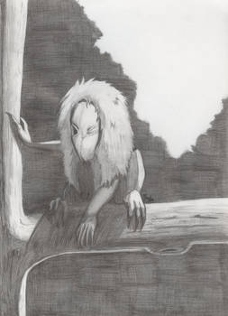 Seedeater pencil