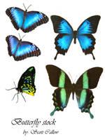 butterflies by WCS-Wildcat