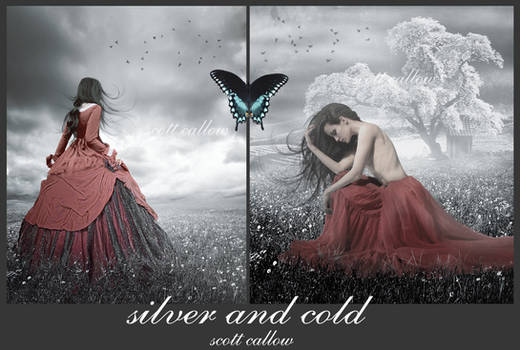 silver and cold