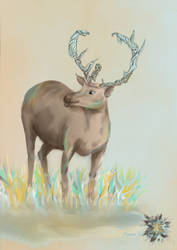 Mystic deer (reworked) by Clemce