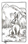 Innocuous Rabbit by Astanael