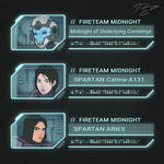 Fireteam Midnight