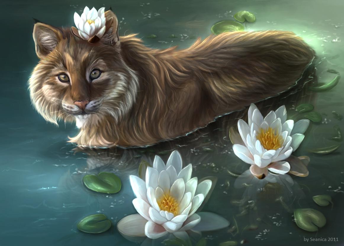 Princesse Elizéa, ou plutôt reine de Zaënel-Hin Water_lily_by_seanica-d41uvce