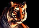 Tiger it is