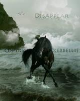 Dissapear by TinkerbelltJ