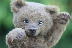 Grizzly Bear Cub by kimbearlys