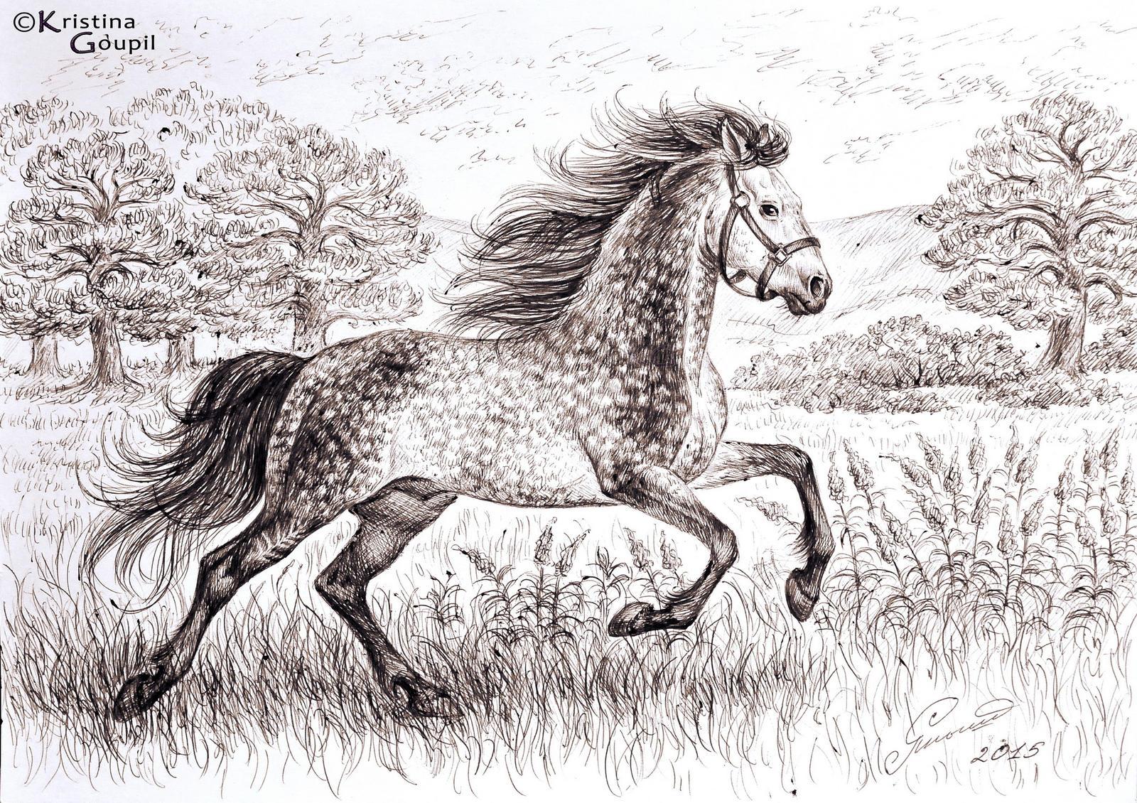 running dapplegrey horse by kristinagoupil on deviantart
