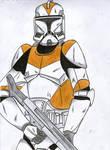 212nd Clone trooper