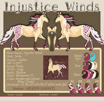 7429 Injustice Winds by Caralel