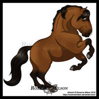 L is for Lusitano