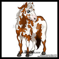 Paint Horse IN