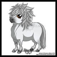 S is for Shetland Pony