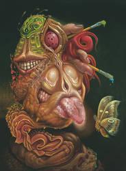 The Moth Catcher by elftantra