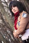Mikasa Ackerman - a merciless yet beautiful world