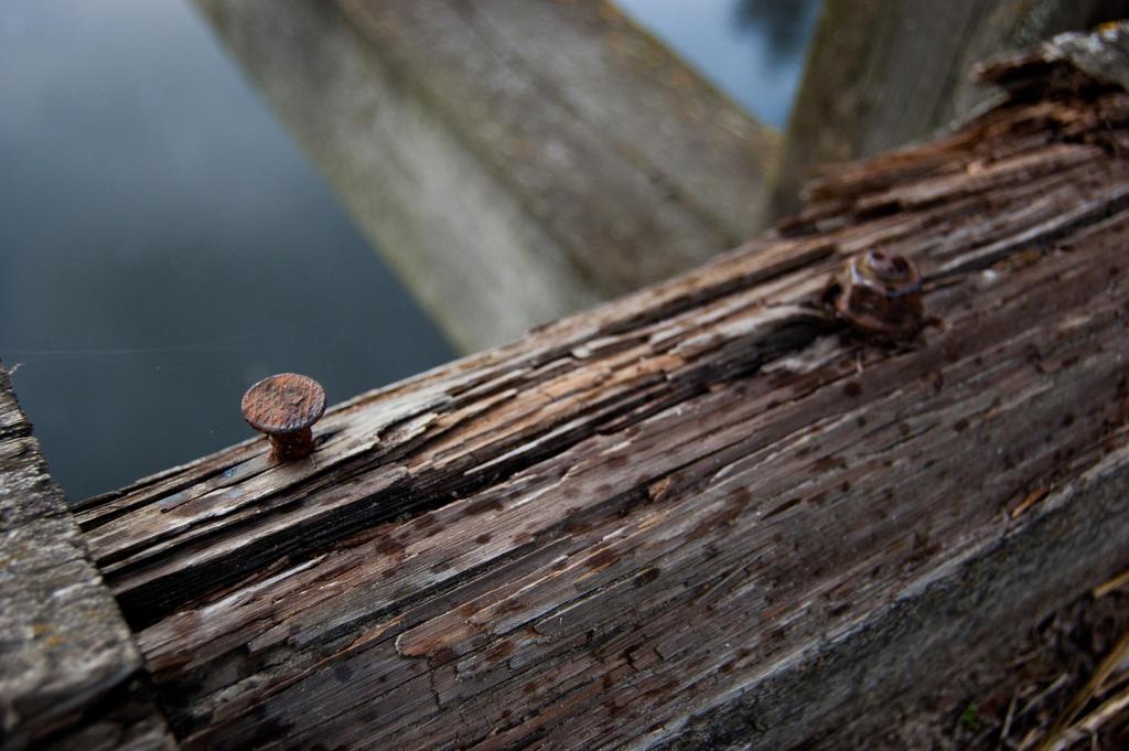 A nail by Domichal