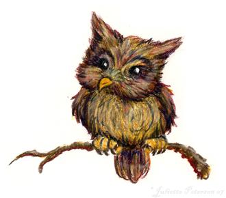 Owl by davenevanxaviour