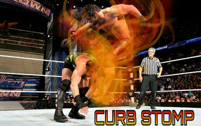 The Curb Stomp! by sparsenote
