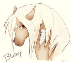 Blueberry Pony by Foux