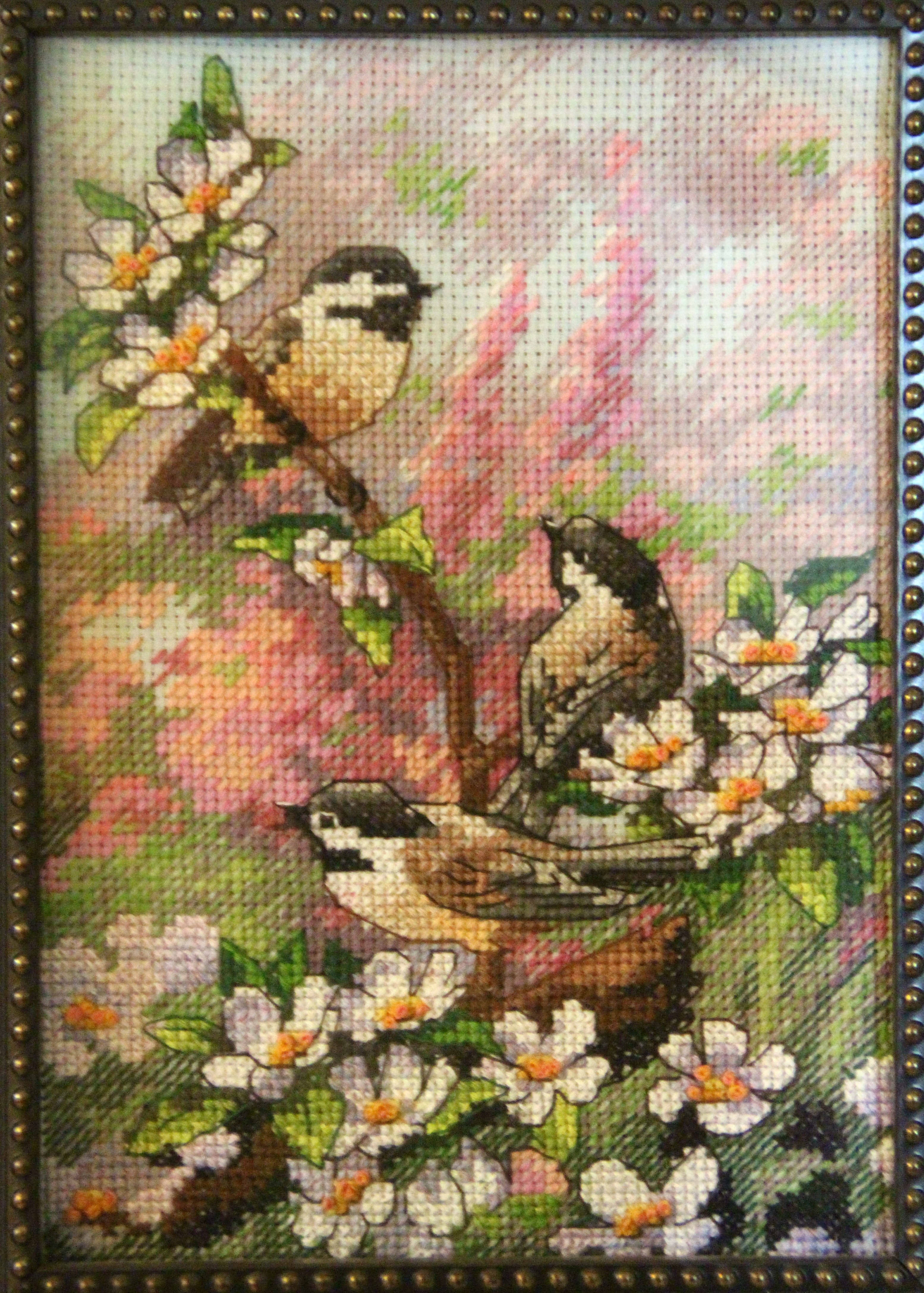 Chickadees in the Spring by aboredlifeisboring