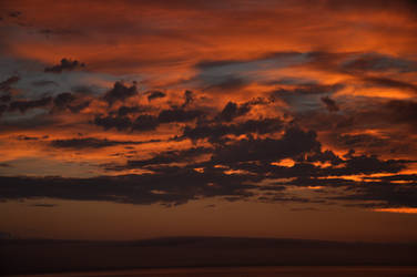 142 sunset