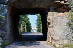281+ Rushmore through tunnel