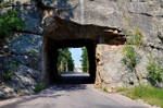 282+Mt.Rushmore in line with road tunnel