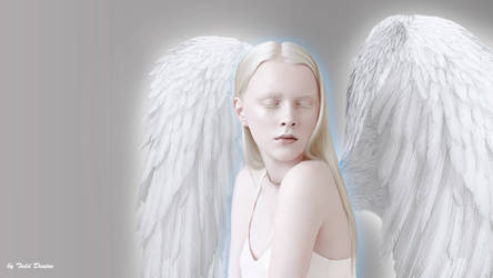 When The Angels Close Their Eyes