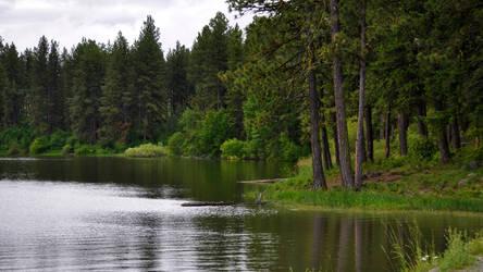 Lakes Edge Wallpaper