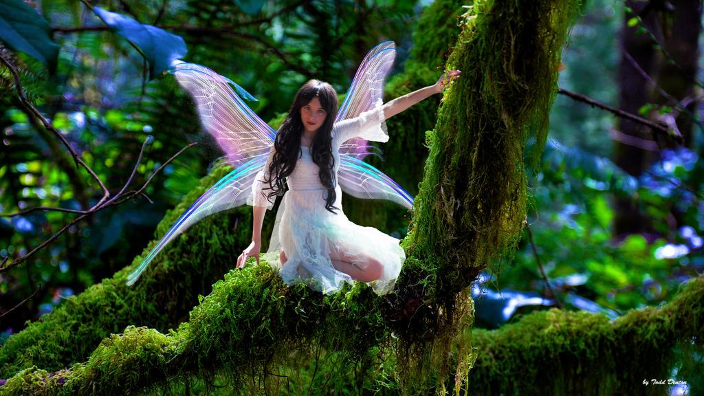 449+1 Snow White Fairy