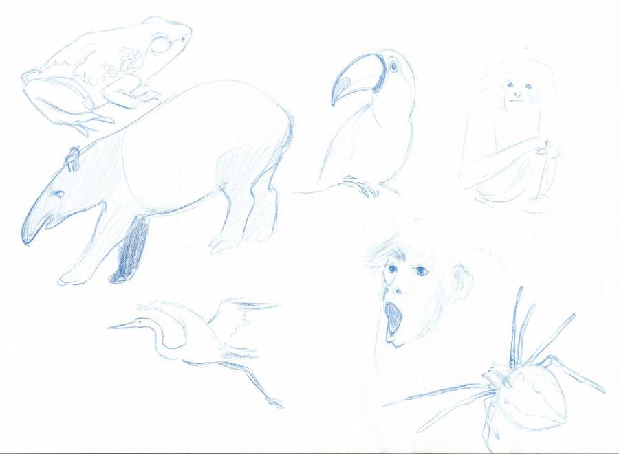 http://fc03.deviantart.net/fs71/i/2012/222/a/c/animals_sketch_by_mizouri-d5ako40.jpg