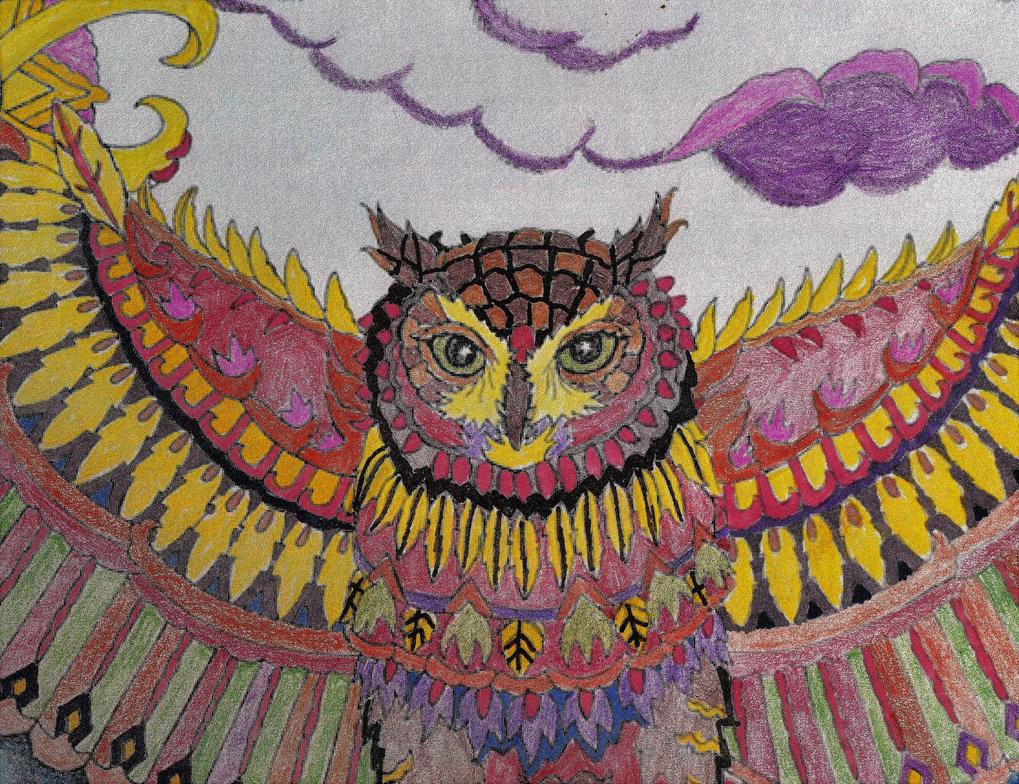 Barn Owl by WiccaSmurf